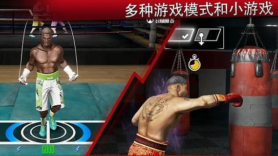 真实拳击2截图4